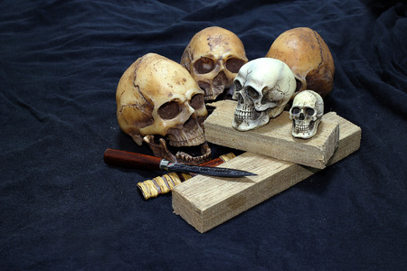 leaf cutter: Skull with Classic Knives and wood on black background - Still life style Classic Knives