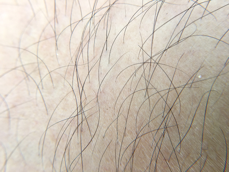 detail of human skin with hair, close-up, macro.