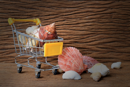 Still life painting photography with Mini shopping cart of a lot of shells with old beautiful wooden background. - copy space.