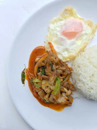Stir Fried chicken with Roasted Chili Paste with rice and fired egg in white plate.