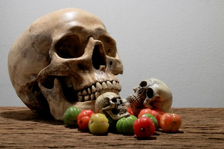 Still life photography with human skull and fresh Cherries at harvest time on wooden table with wall background.