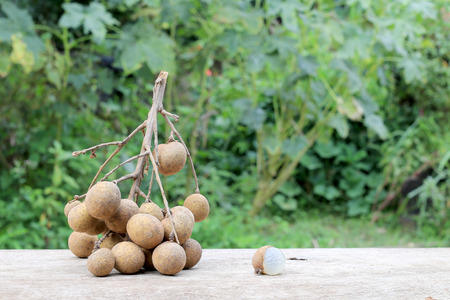 Longan Fresh. A bunch of Longan and Peel on a wooden background with green natural background in the garden from northen Thailand.  sweet and fragrant,The brown fruit looks like a sphere.