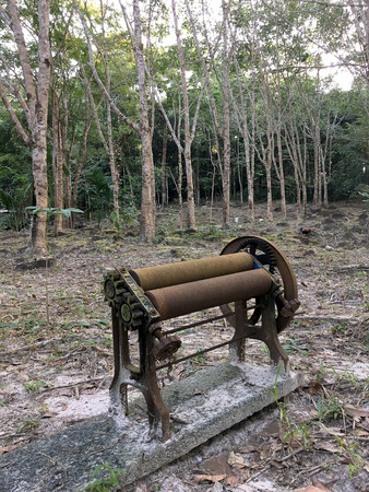 Old local Rubber extrusion machine used by hand in tapping rubber, Rubber plantation lifes, Rubber trees in Thailand. Stock Photo