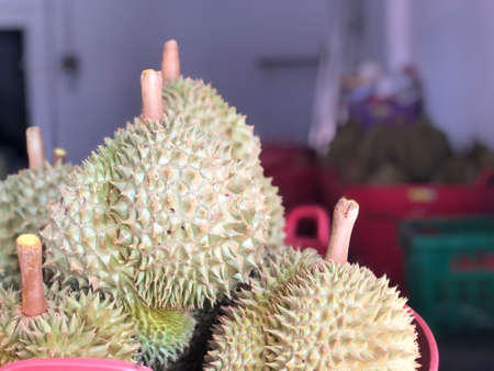Durian fruit is placed in a red basket for sale to the buyer in fruit market,Thailand. Durian that is known as the king of fruits of Thailand. Standard-Bild - 158042130