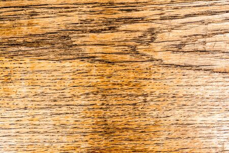 Old wood peel dark texture. Grunge abstract background.