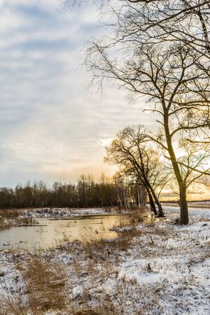 The orange sun behind the trees, the fields with a pond and tall grass covered in snow. Beautiful sunset in early spring sun with blue sky and clouds. Wild nature landscape. 写真素材