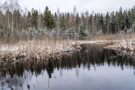 The Frozen Forest Lake with First Snow, autumn landscape on a cloudy day