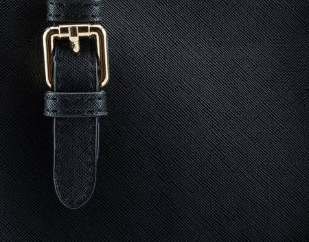 leather bag: buckle on leather bag