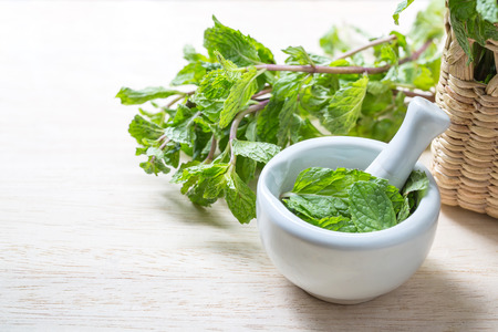 Fresh mint in mortar on  table, concept health
