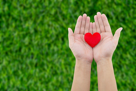 Heart in the hand on grass background
