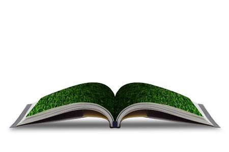libros abiertos: Abra el libro de hierba aislado sobre fondo blanco