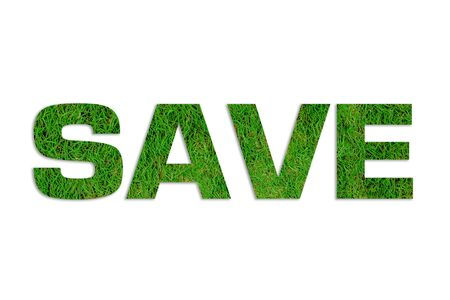 ecologist: Save Energy, used by green leafs on white background