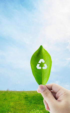 Fresh green leaf in hand with recycle symbol on nature background Stock Photo