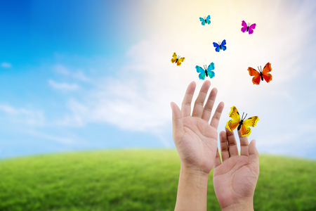 butterfly flying outdoors on a beautiful nature with freedom environment concept. Stockfoto
