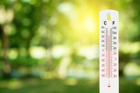 녹색 자연 배경 및 온도 측정, 환경 개념에 온도계. 스톡 콘텐츠