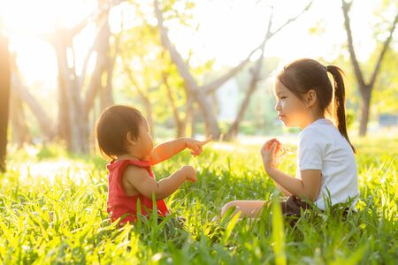 Beautiful young asian kid sitting playing in summer in the park with enjoy and cheerful on green grass Stockfoto