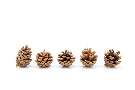 image group of pinecone isolated on white background, set of pine cone tree is symbol decoration Christmas holiday, object nature concept. Archivio Fotografico - 133679305