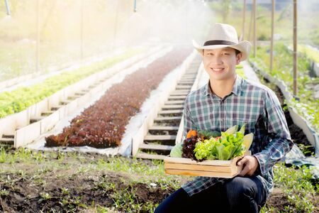 Portrait young asian man smiling harvest and picking up fresh organic vegetable kitchen garden in basket in the hydroponic farm, agriculture and cultivation for healthy food and business concept.