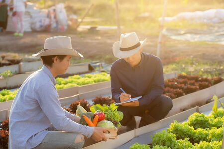 Two young asian man checking and picking up organic fresh vegetable in hydroponic farm and writing record document grow of leaf for quality produce, small business owner concept.
