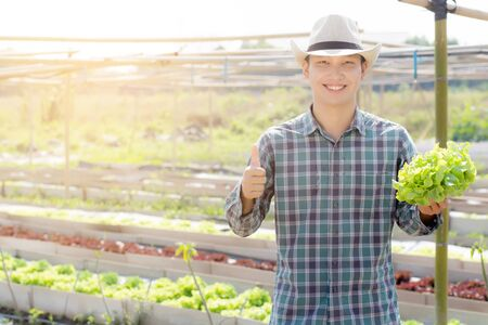 Young asian man farmer holding and showing fresh organic green oak lettuce and gesture thumbs up in farm, produce and cultivation for harvest agriculture vegetable with business, healthy food concept.