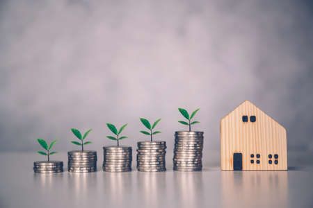 Stack of coin and tree with saving money for real estate and success, finance and investment with leaf, insurance home, deposit and property, residential and financial, business concept.