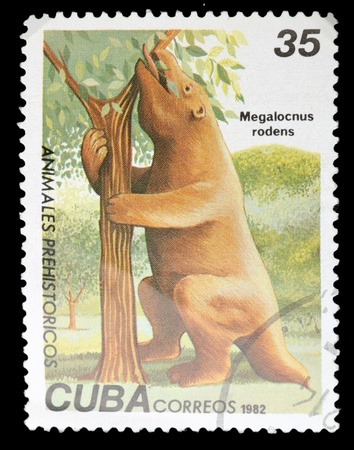 CUBA - CIRCA 1982: A Stamp printed in CUBA shows image of a megalocnus rodens, from the series, circa 1982 photo