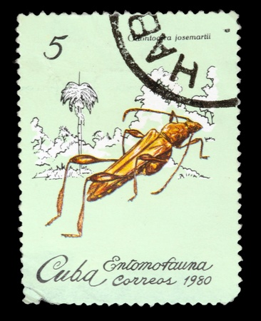 hexapod: CUBA - CIRCA 1980: A Stamp printed in CUBA shows the image of a Beetle with the description Odontocera josemartii from the series Insects, circa 1980