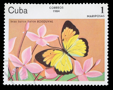 cuba butterfly: CUBA - CIRCA 1984: A stamp printed in Cuba shows Butterfly, circa 1984 Stock Photo