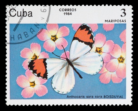 CUBA - CIRCA 1984: A stamp printed in Cuba shows Butterfly, circa 1984 Stock Photo - 11796181