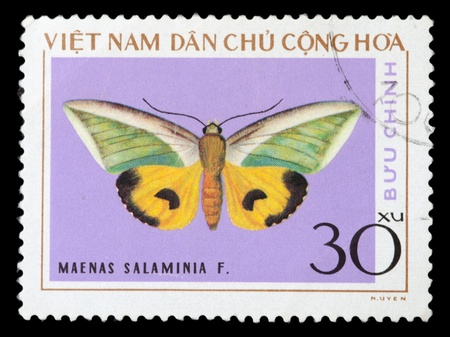 VIETNAM - CIRCA 1976: A stamp printed in Vietnam shows Maenas salaminia, series devoted to butterflies, circa 1976 photo
