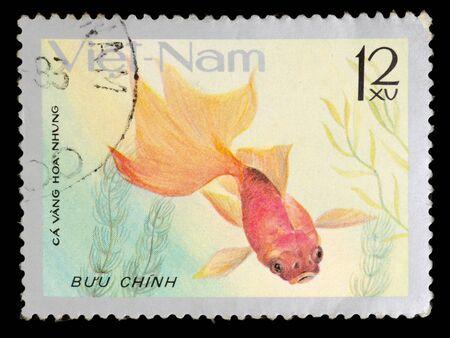 nam: VIET NAM - CIRCA 1977: stamp printed by Viet Nam, shows Goldfish, circa 1977 Stock Photo