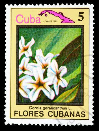philatelic: CUBA - CIRCA 1983: A Stamp printed in Cuba shows image flower, circa 1983 Stock Photo