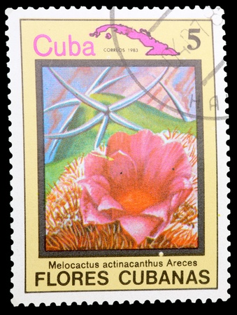 CUBA - CIRCA 1983: A stamp printed in CUBA shows a Melocactus actinacanthus Areces, series, circa 1983 photo