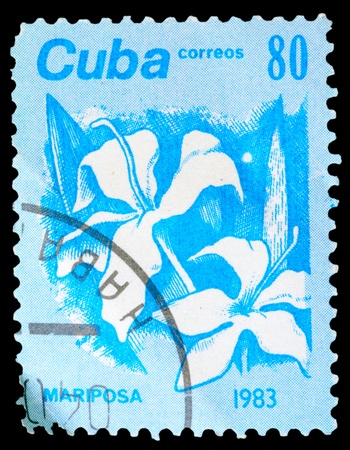 CUBA - CIRCA 1983: A stamp printed in Cuba shows the Mariposa, from the series Flowers, circa 1983 photo