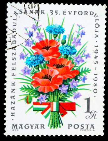 fascism: HUNGARY - CIRCA 1980: A stamp printed in Hungary shows flowers Liberation from Fascism, 35th Anniversary, circa 1980 Stock Photo