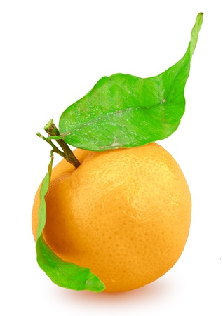 fresh mandarin fruits with cut and green leaves isolated on white background photo