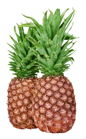 close up of a ripe pineapple isolated on white background photo