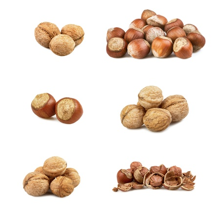 set of a nuts isolated on a whiye background photo