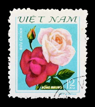 VIETNAM - CIRCA 1979: A Stamp printed in Vietnam shows Rose, circa 1979