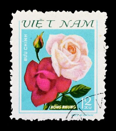 VIETNAM - CIRCA 1979: A Stamp printed in Vietnam shows Rose, circa 1979