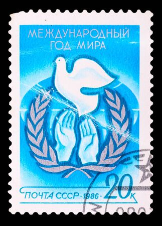 USSR - CIRCA 1986: A stamp printed in USSR shows the international year of world, circa 1986 photo