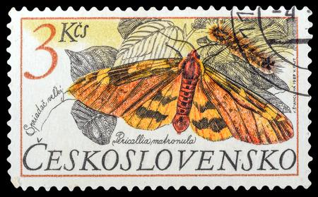 timbre postal: CZECHOSLOVAKIA- alrededor de 1987: un sello impreso en la Checoslovaquia, muestra mariposa Pericallia matronula, mariposas de la serie, alrededor del año 1987 Foto de archivo
