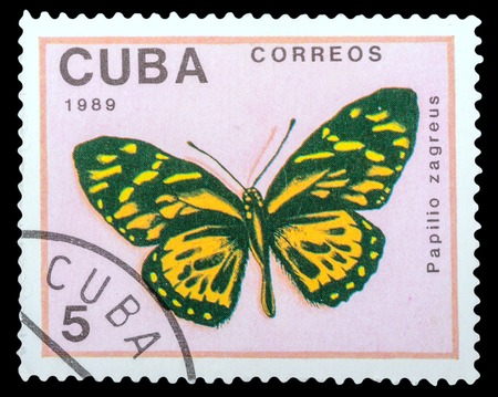 cuba butterfly: CUBA- CIRCA 1989: a stamp printed in the Cuba, shows  butterfly Papilio zagreus, series Butterflies, circa 1989 Stock Photo
