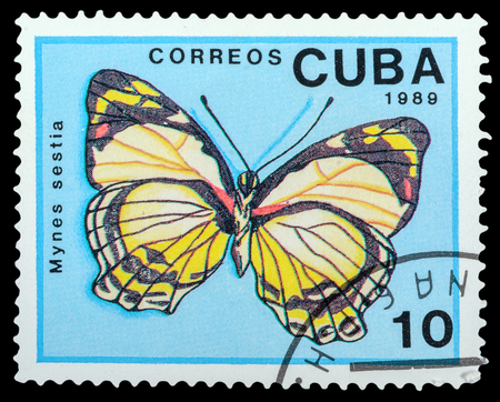 cuba butterfly: CUBA- CIRCA 1989: a stamp printed in the Cuba, shows  butterfly Mynes Sestia, series Butterflies, circa 1989