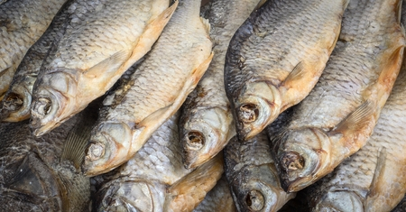 bluefish: The dried fish clous-up