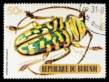 cerambycidae: BURUNDI - CIRCA 1970: A stamp printed in Burundi shows Beetles, series animals, circa 1970