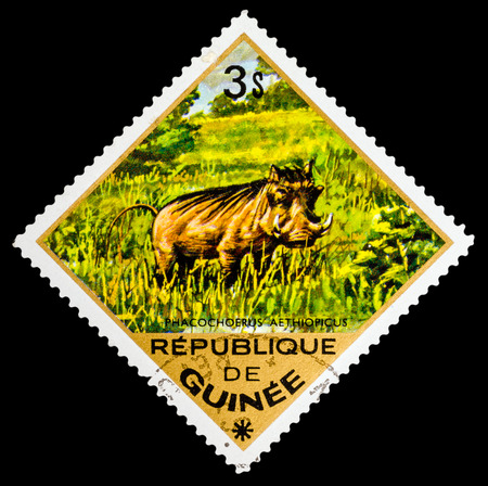 guinee: REPUBLIQUE DE GUINEE - CIRCA 1976: A stamp printed in Republique de Guinee shows Phacochoerus aethiopicus, series animals, circa 1976 Editorial