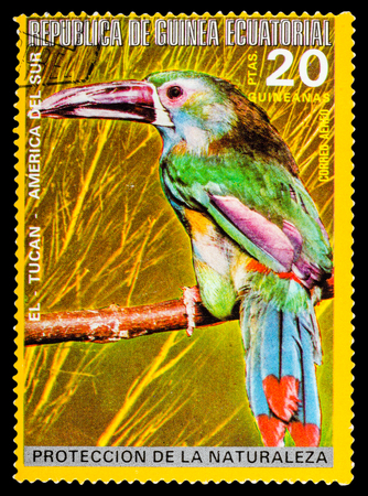 REPUBLIQUE DE GUINEE - CIRCA 1972: A stamp printed in Republique de Guinee shows wild birds, series animals, circa 1972