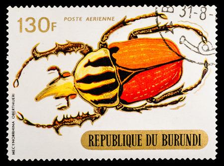 sello: BURUNDI - CIRCA 1970: A stamp printed in Burundi shows Beetles, series animals, circa 1970