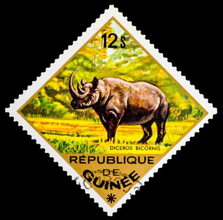 guinee: REPUBLIQUE DE GUINEE - CIRCA 1976: A stamp printed in Republique de Guinee shows Diceros Bicornis, series animals, circa 1976 Editorial